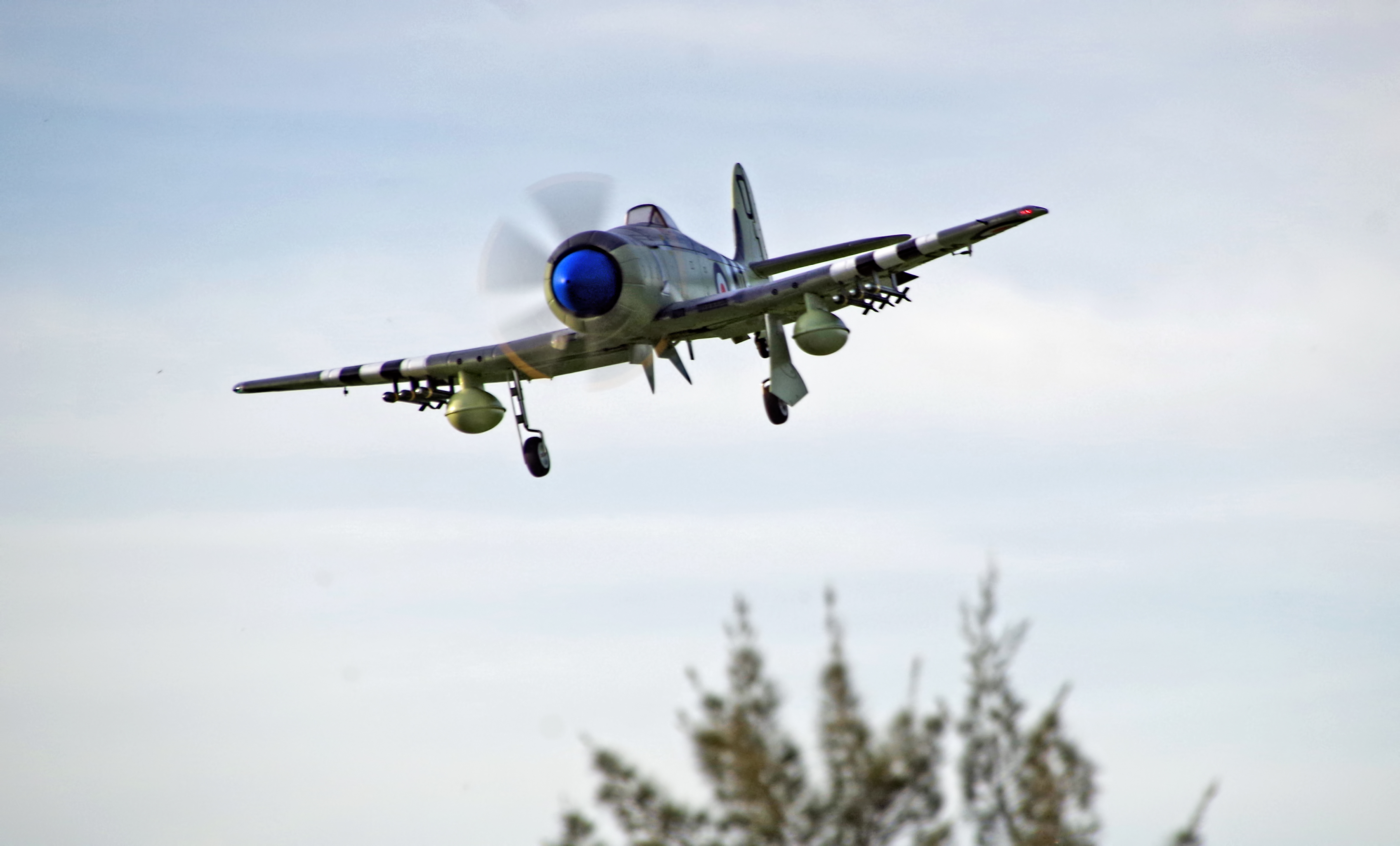 Video: Avios Hawker Sea Fury FB11 In Action!